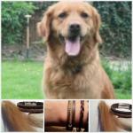 Armband met een vlechtje van hondenhaar